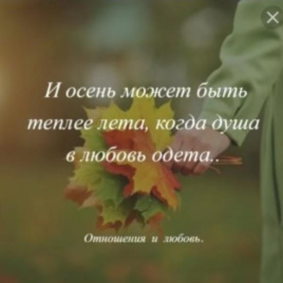 Рисунок профиля (Настя)